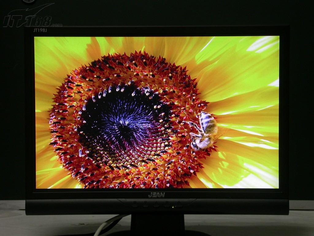 创维55寸电视后面图片