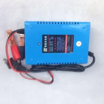 优信12v智能汽车电瓶充电器摩托车电瓶充电器电动车