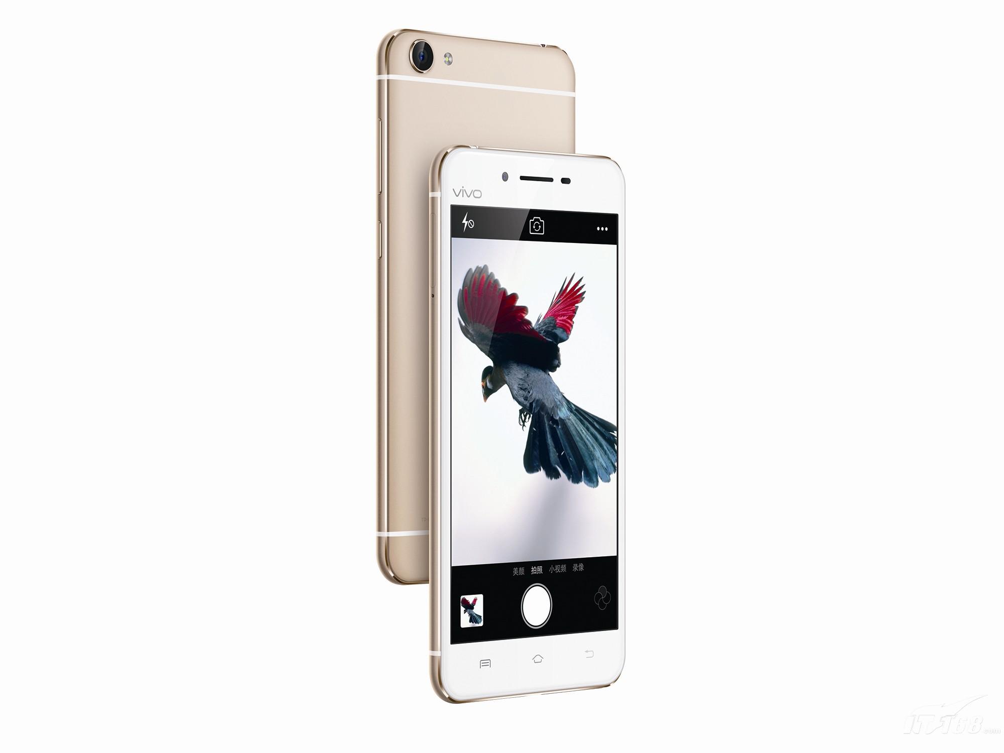 vivoX6Plus 全网通 金色手机产品图片6素材