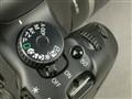 佳能 EOS 450D局部细节图图片6