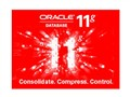 ORACLE Oracle 11g 企业版