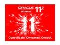 ORACLE Oracle 11g 标准版