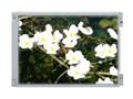 友达10.4寸LCD G104SN05