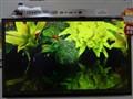 夏普 LCD-46LX440A 46英寸超窄边网络LED电视实景图片2