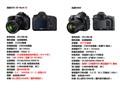 佳能 EOS 5D5D3对比D800图片