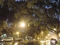 尼康 P330 数码相机夜景样张图片4