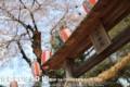 佳能 EOS 5D风景样张图片3
