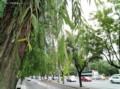 魅族 魅蓝Max 64GB样张图片2