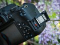 佳能 EOS 800D图片5