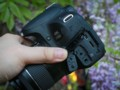 佳能 EOS 800D图片6